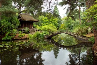 Almond Eye bridge and Shinto Temple, Japanese Garden, Tatton Park, Knutsford 13.07.16