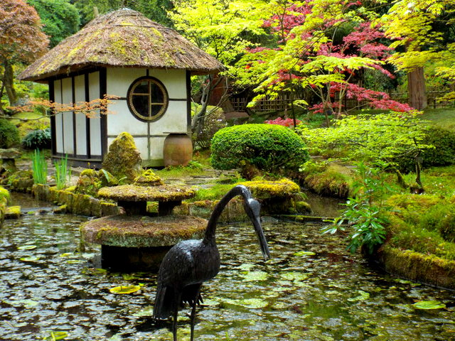In the Japanese Garden, Tatton Park, Knutsford 2nd May 2015